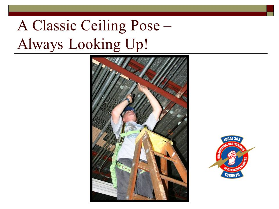 A Classic Ceiling Pose – Always Looking Up!