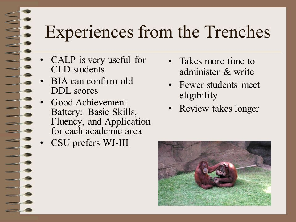 Experiences from the Trenches CALP is very useful for CLD students BIA can confirm old DDL scores Good Achievement Battery: Basic Skills, Fluency, and