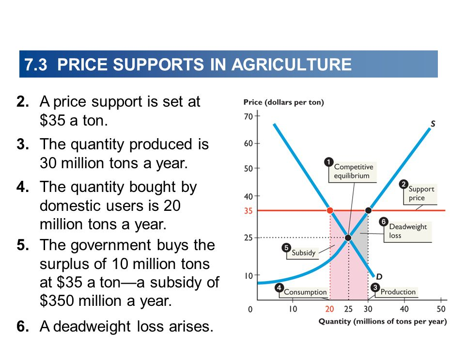 7.3 PRICE SUPPORTS IN AGRICULTURE 2.A price support is set at $35 a ton.