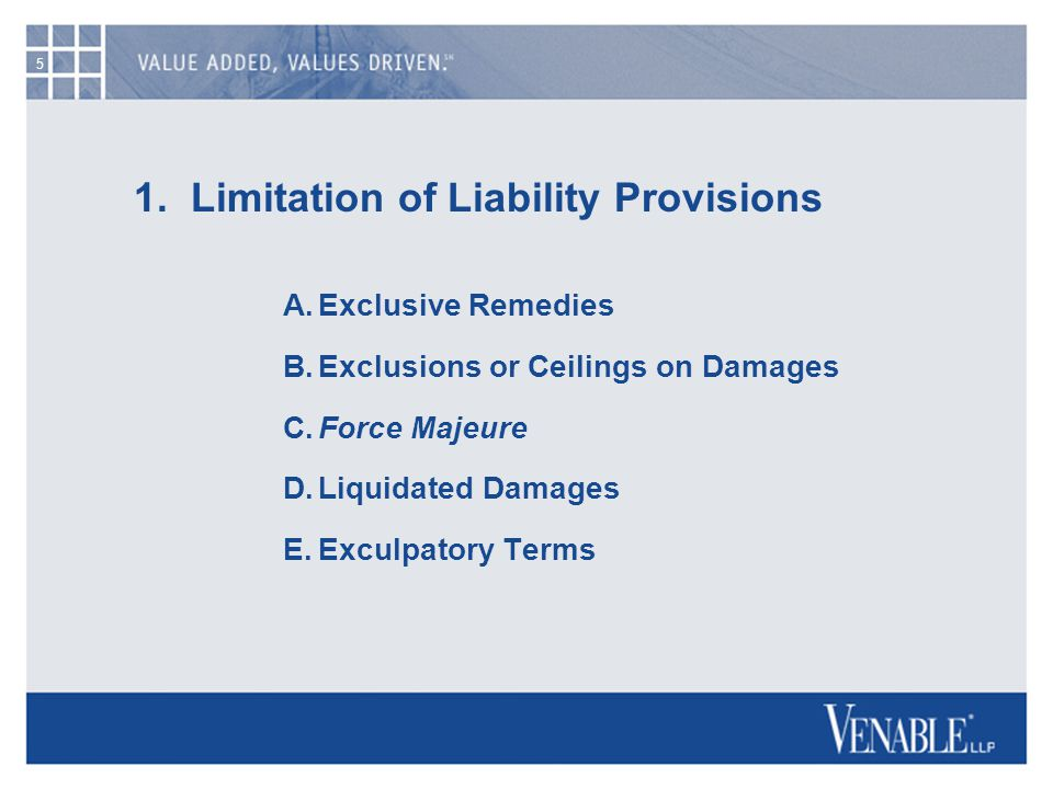 6 1.Limitation of Liability Provisions A.