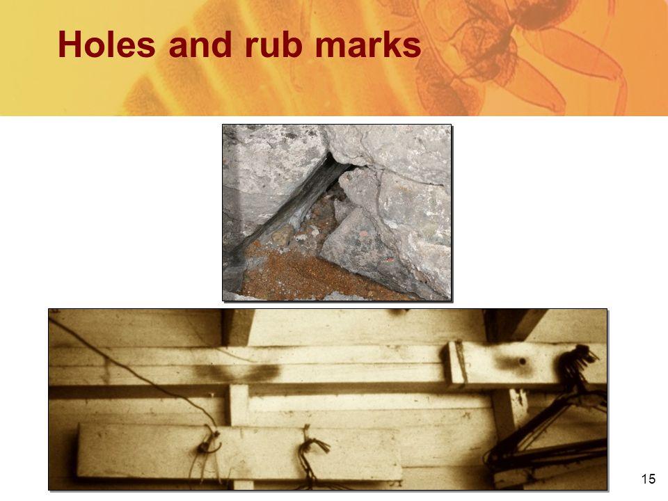 15 Holes and rub marks