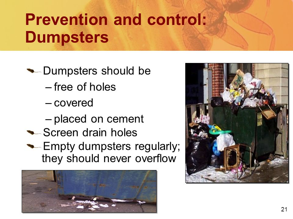 21 Prevention and control: Dumpsters Dumpsters should be –free of holes –covered –placed on cement Screen drain holes Empty dumpsters regularly; they