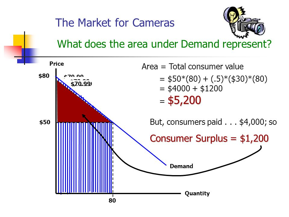 The Market for Cameras What does the area under Demand represent.