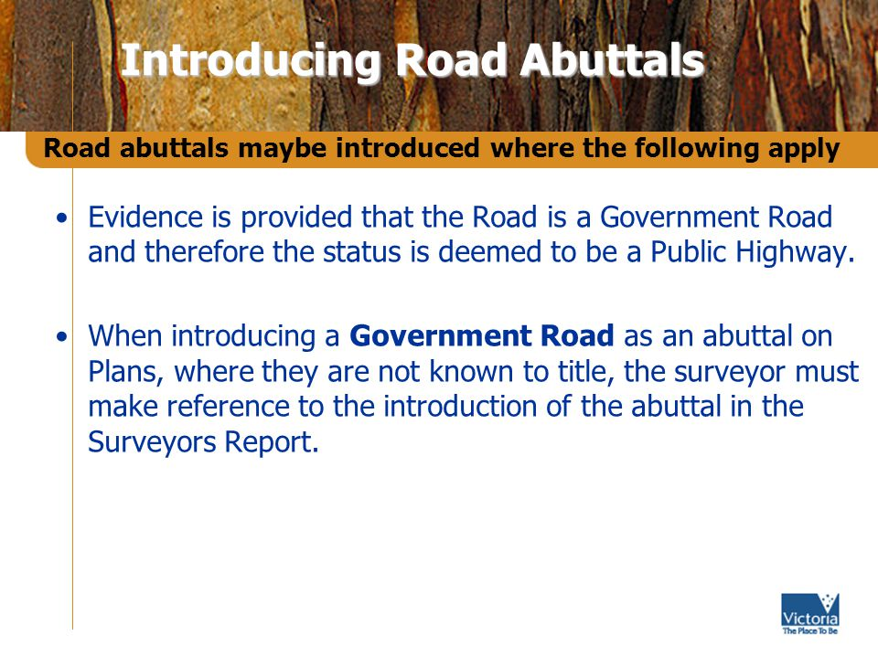 Evidence is provided that the Road is a Government Road and therefore the status is deemed to be a Public Highway.