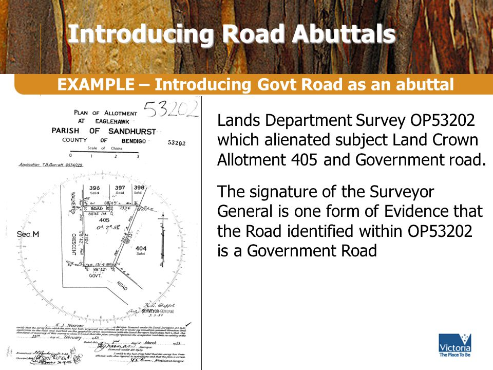 EXAMPLE – Introducing Govt Road as an abuttal Introducing Road Abuttals Lands Department Survey OP53202 which alienated subject Land Crown Allotment 405 and Government road.