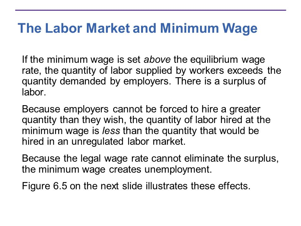 The Labor Market and Minimum Wage If the minimum wage is set above the equilibrium wage rate, the quantity of labor supplied by workers exceeds the quantity demanded by employers.