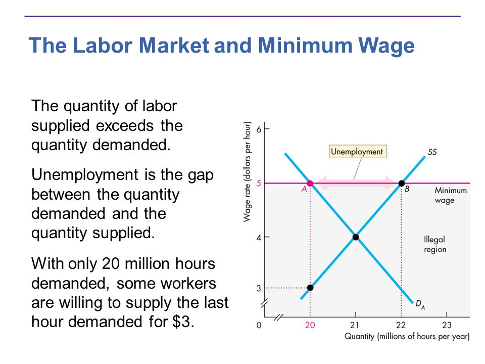 The Labor Market and Minimum Wage The quantity of labor supplied exceeds the quantity demanded.