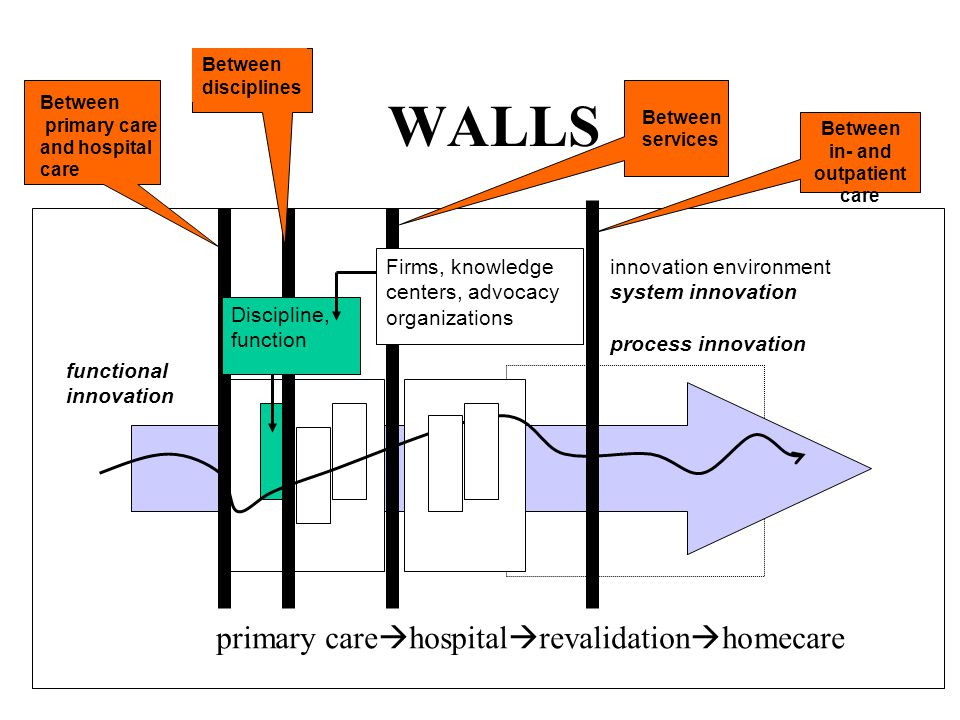 WALLS innovation environment system innovation process innovation functional innovation primary care hospital revalidation homecare Between primary care and hospital care Between disciplines Between services Between in- and outpatient care Discipline, function Firms, knowledge centers, advocacy organizations