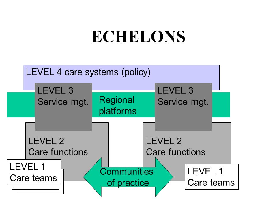 LEVEL 2 Care functions Regional platforms LEVEL 4 care systems (policy) ECHELONS LEVEL 3 Service mgt.