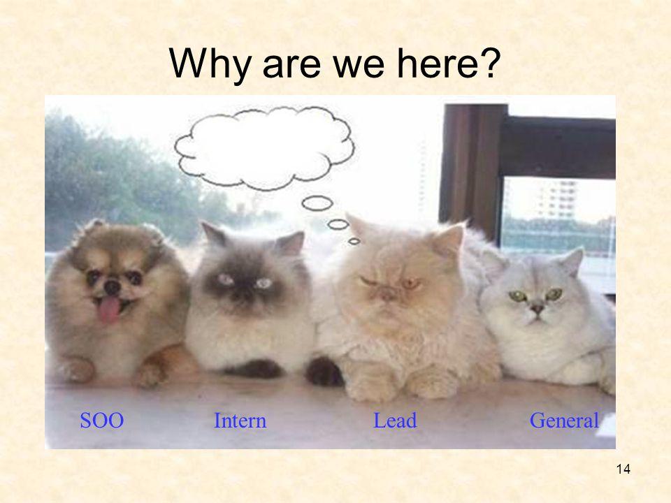 14 Why are we here? SOO Intern Lead General