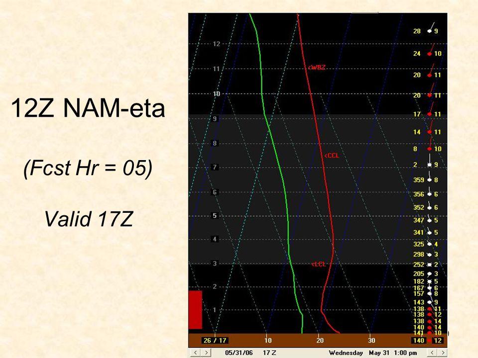 49 12Z NAM-eta (Fcst Hr = 05) Valid 17Z