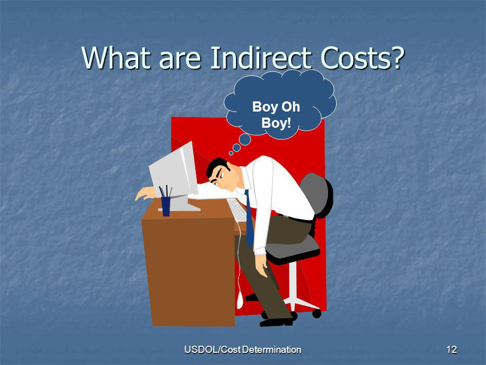 USDOL/Cost Determination12 What are Indirect Costs? Boy Oh Boy!
