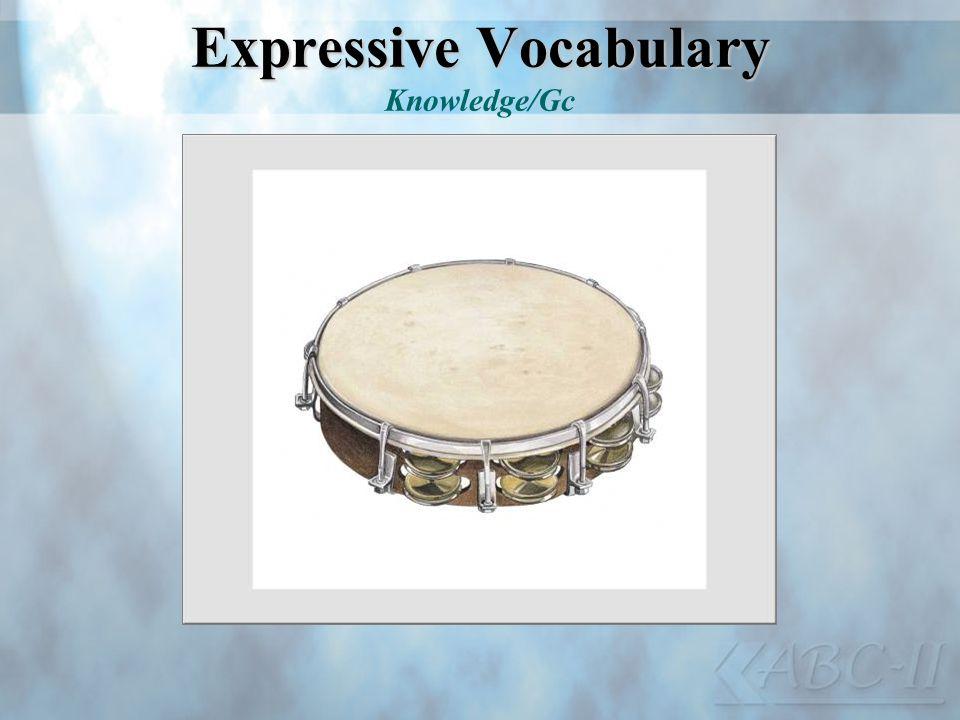 Expressive Vocabulary Expressive Vocabulary Knowledge/Gc