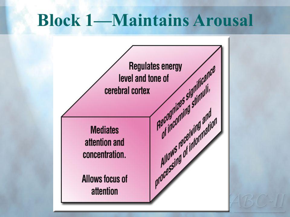 Block 1Maintains Arousal