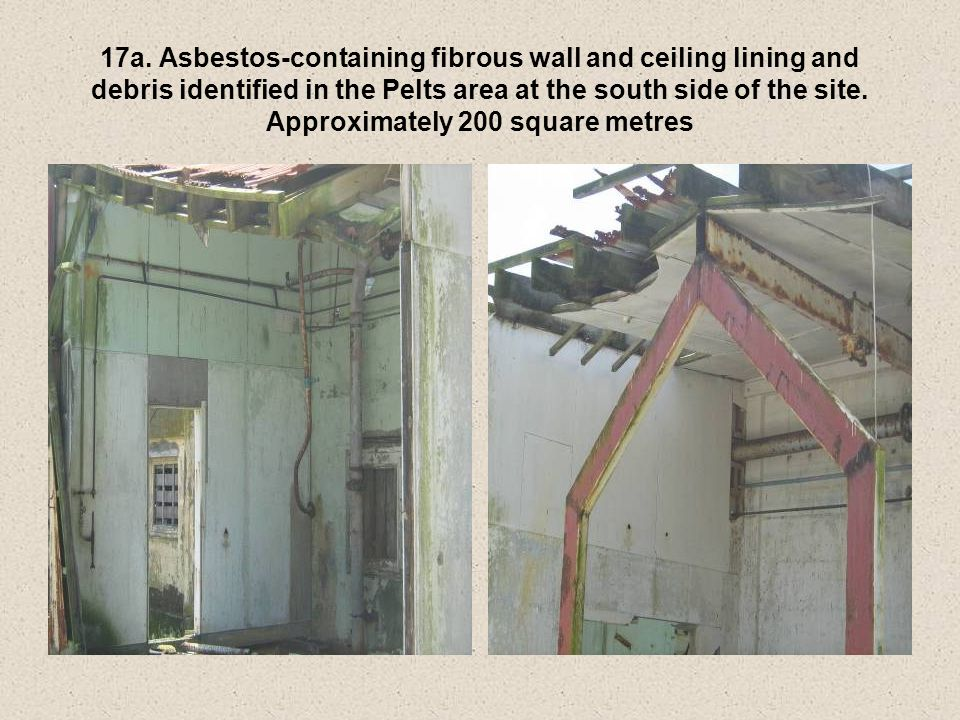 17a. Asbestos-containing fibrous wall and ceiling lining and debris identified in the Pelts area at the south side of the site. Approximately 200 squa