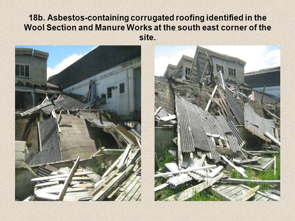 18b. Asbestos-containing corrugated roofing identified in the Wool Section and Manure Works at the south east corner of the site.