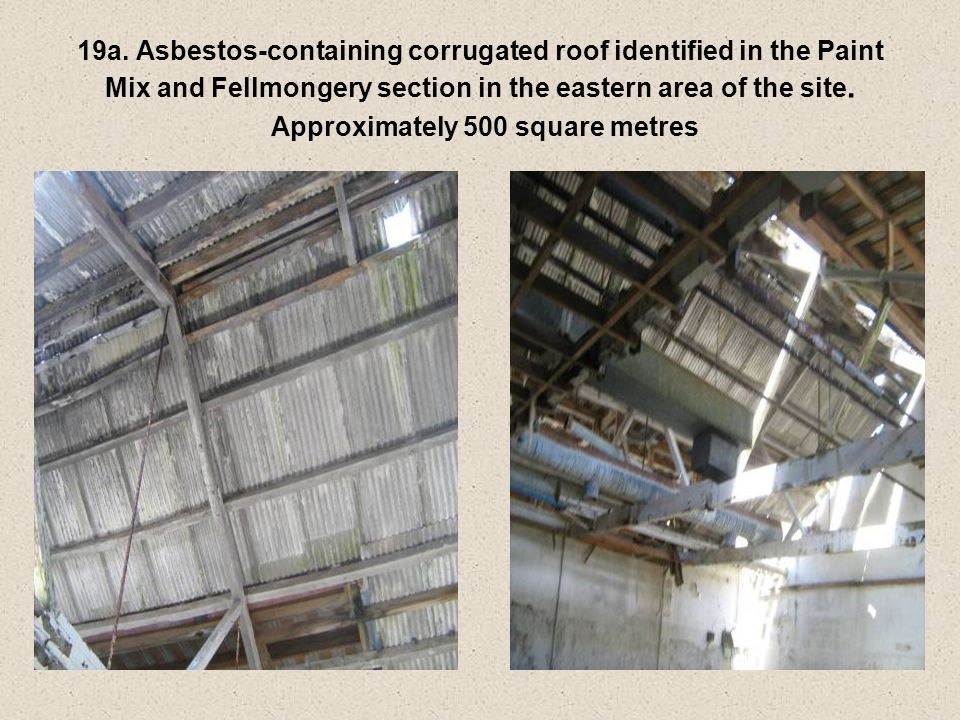 19a. Asbestos-containing corrugated roof identified in the Paint Mix and Fellmongery section in the eastern area of the site. Approximately 500 square
