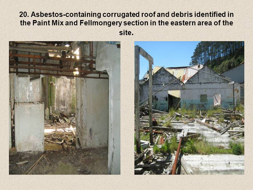 20. Asbestos-containing corrugated roof and debris identified in the Paint Mix and Fellmongery section in the eastern area of the site.