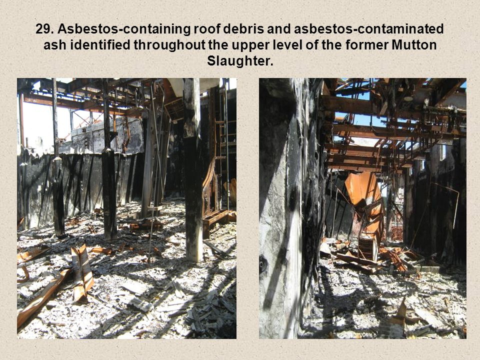 29. Asbestos-containing roof debris and asbestos-contaminated ash identified throughout the upper level of the former Mutton Slaughter.
