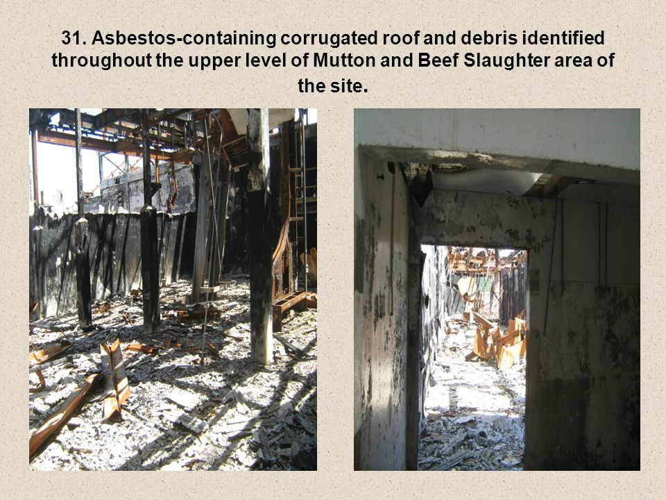 31. Asbestos-containing corrugated roof and debris identified throughout the upper level of Mutton and Beef Slaughter area of the site.