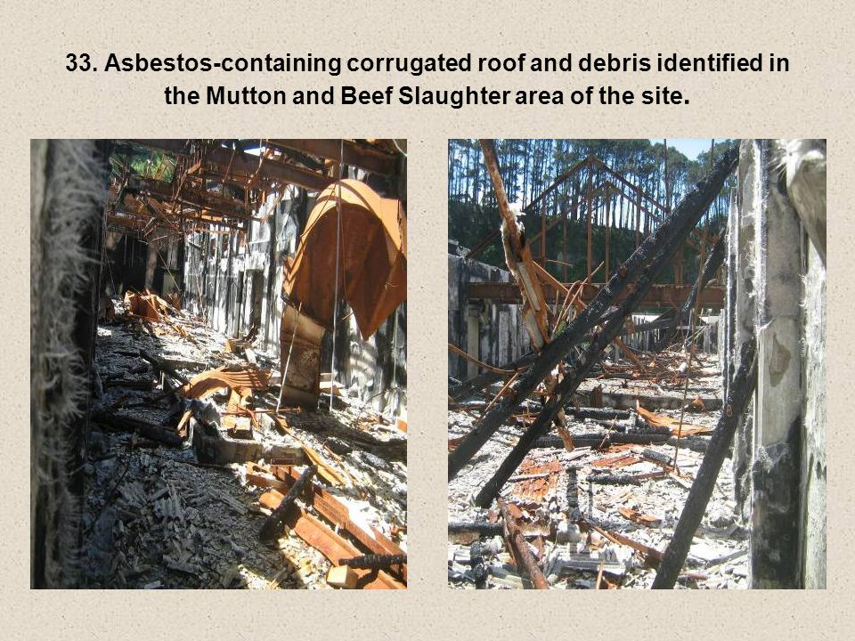 33. Asbestos-containing corrugated roof and debris identified in the Mutton and Beef Slaughter area of the site.