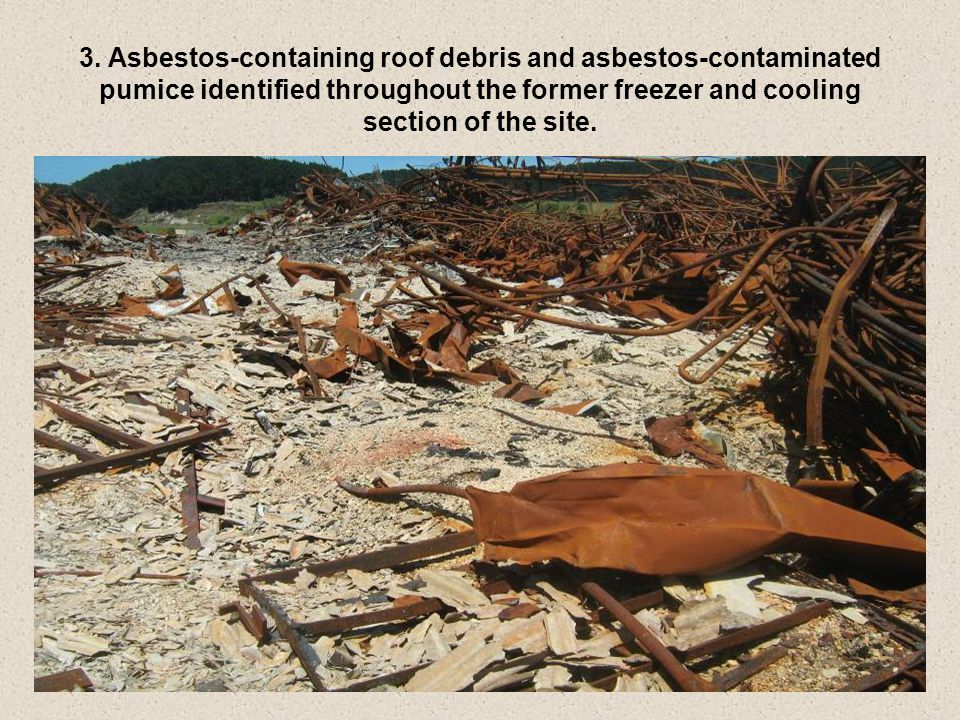 3. Asbestos-containing roof debris and asbestos-contaminated pumice identified throughout the former freezer and cooling section of the site.