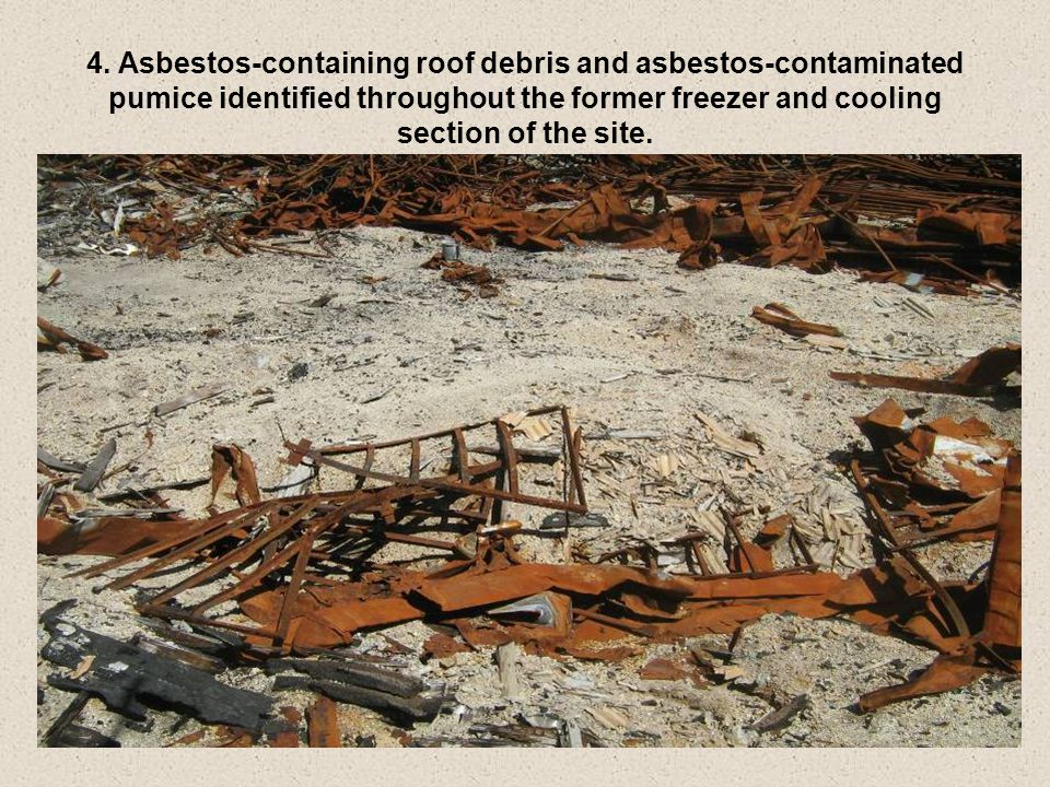 4. Asbestos-containing roof debris and asbestos-contaminated pumice identified throughout the former freezer and cooling section of the site.