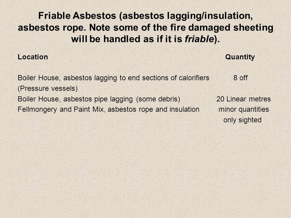 Friable Asbestos (asbestos lagging/insulation, asbestos rope.