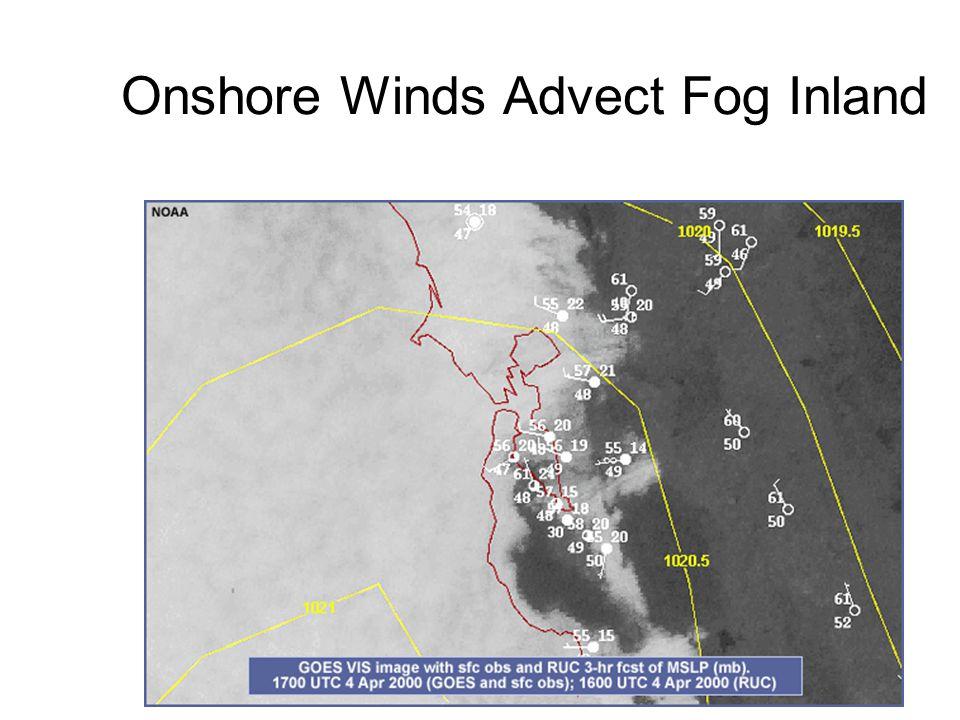 Fog Formation over San Francisco