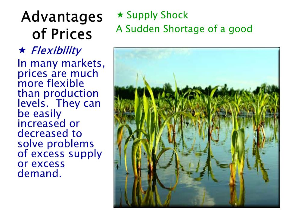 Supply Shock A Sudden Shortage of a good Flexibility In many markets, prices are much more flexible than production levels. They can be easily increas