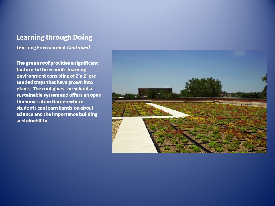 Learning through Doing Learning Environment Continued The green roof provides a significant feature to the schools learning environment consisting of
