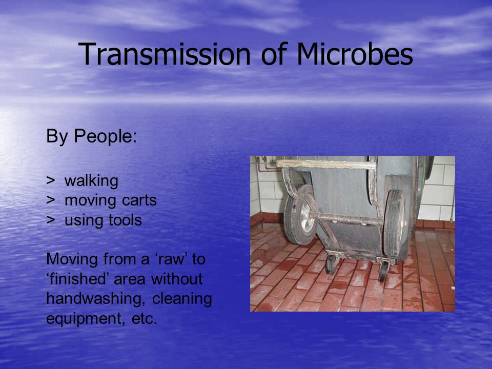 Transmission of Microbes By People: > walking > moving carts > using tools Moving from a raw to finished area without handwashing, cleaning equipment, etc.