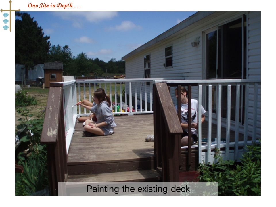 One Site in Depth... Painting the existing deck