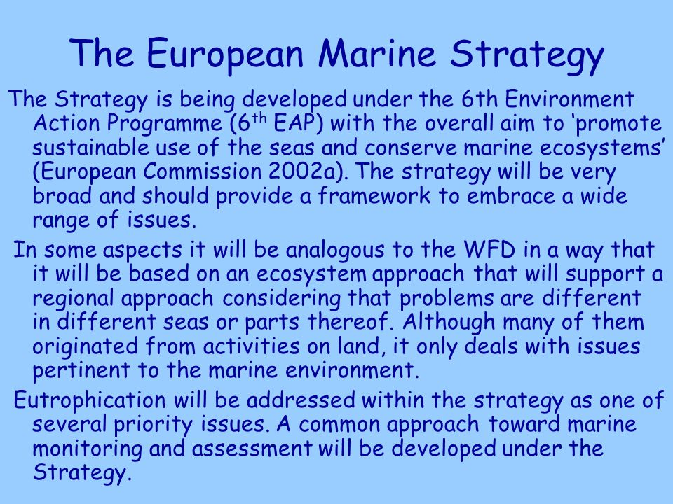 The European Marine Strategy The Strategy is being developed under the 6th Environment Action Programme (6 th EAP) with the overall aim to promote sustainable use of the seas and conserve marine ecosystems (European Commission 2002a).