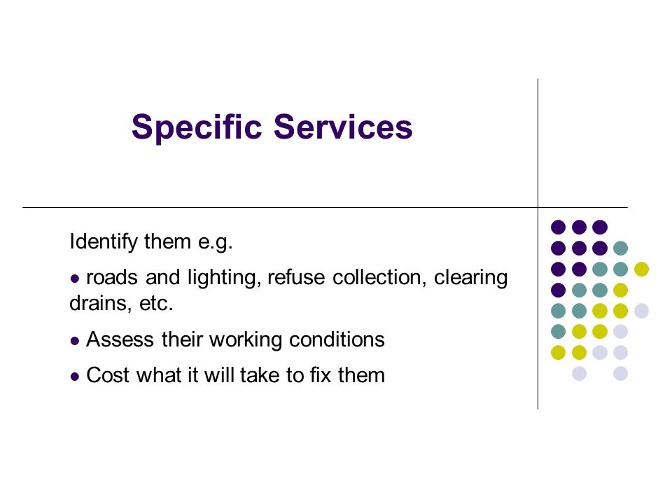 Specific Services Identify them e.g. roads and lighting, refuse collection, clearing drains, etc. Assess their working conditions Cost what it will ta