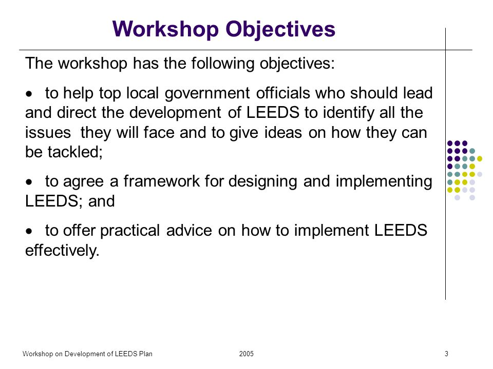 2005Workshop on Development of LEEDS Plan3 Workshop Objectives The workshop has the following objectives: to help top local government officials who should lead and direct the development of LEEDS to identify all the issues they will face and to give ideas on how they can be tackled; to agree a framework for designing and implementing LEEDS; and to offer practical advice on how to implement LEEDS effectively.