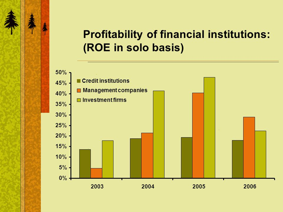 Profitability of financial institutions: (ROE in solo basis) 0% 5% 10% 15% 20% 25% 30% 35% 40% 45% 50% 2003200420052006 Credit institutions Management