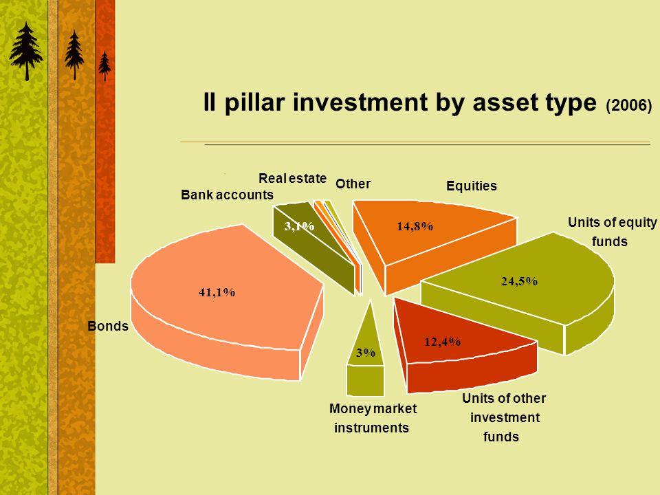 II pillar investment by asset type (2006) Equities Units of equity funds Units of other investment funds Money market instruments Bonds Bank accounts Real estate Other 41,1% 3,1%14,8% 12,4% 3% 24,5%