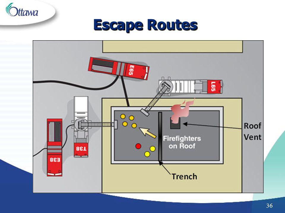 36 Escape Routes