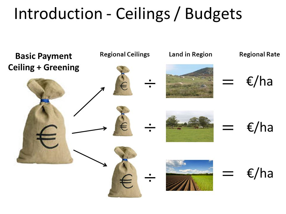 Specialist Beef (1) Most scenarios allocate less money to this sector Production orientated budget ceilings best Top 3 scenarios for Specialist beef also favour cattle and sheep (DA); dairy farms and smaller sized businesses.