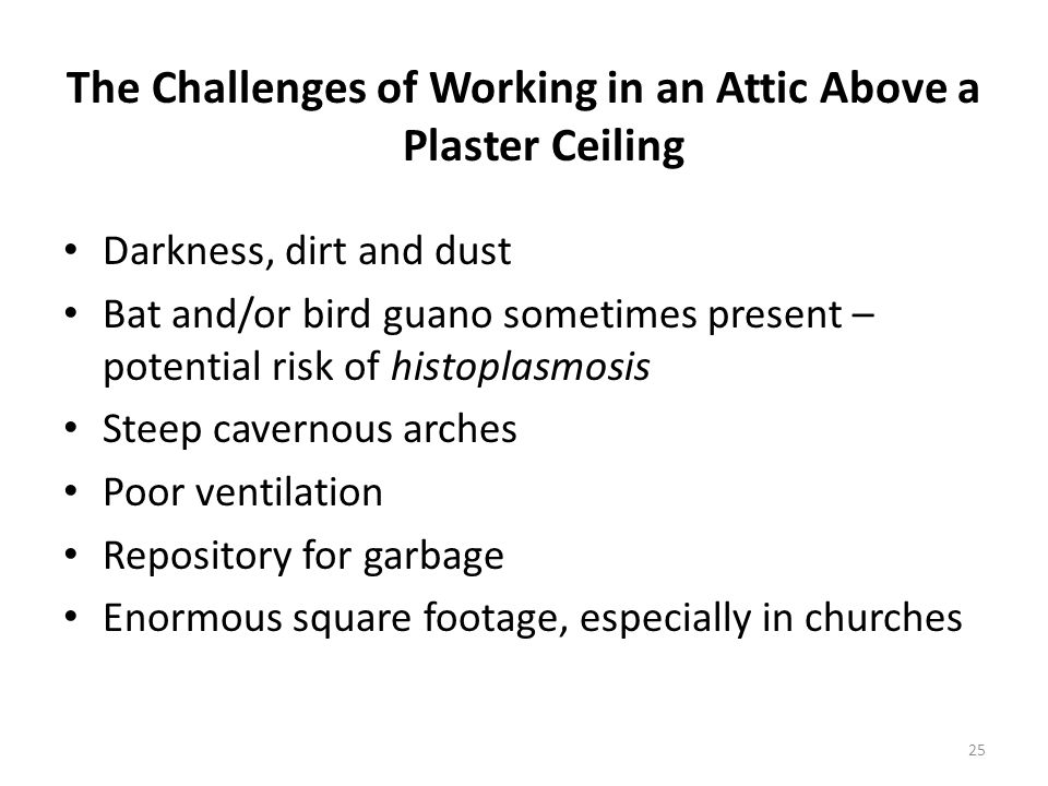 The Challenges of Working in an Attic Above a Plaster Ceiling Darkness, dirt and dust Bat and/or bird guano sometimes present – potential risk of histoplasmosis Steep cavernous arches Poor ventilation Repository for garbage Enormous square footage, especially in churches 25