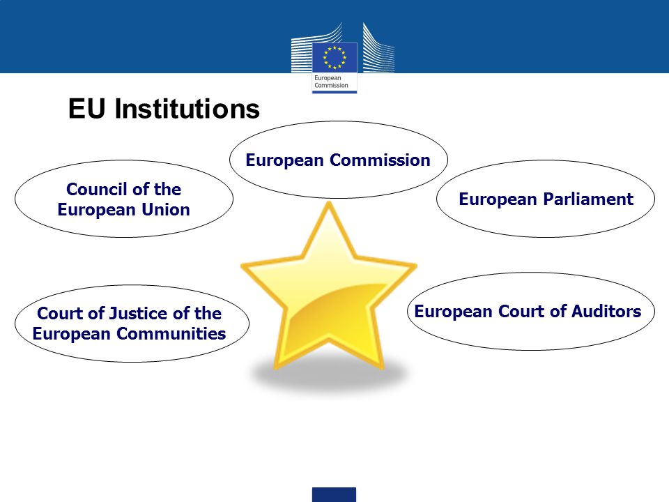 EU Budget Section I – Parliament Section II – Council Section III – Commission Section IV – Court of Justice Section V – Court of Auditors Section VI – Economic and Social Committee Section VII – Committee of the Regions Section VIII – European Ombudsman Section IX – European Data Protection Supervisor Section X – European External Action Service (EEAS) – 95% of the EU budget – goes to fund concrete activities ( operating appropriations ) is paid out by the Commission (Section III).