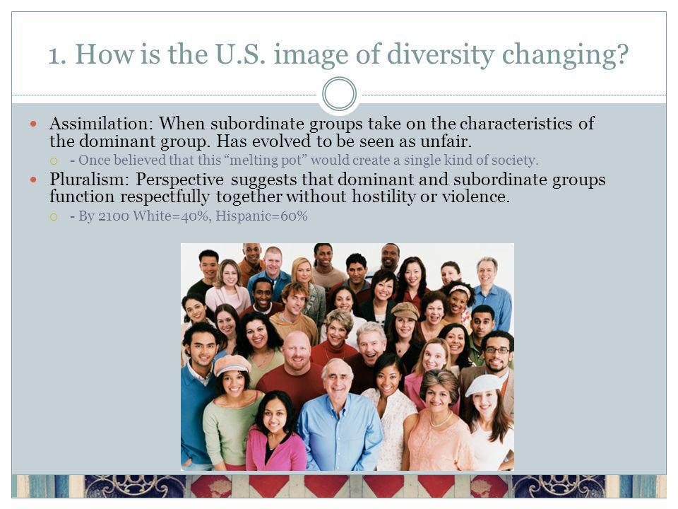 1. How is the U.S. image of diversity changing.