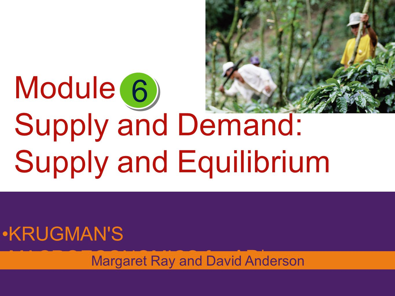Module Supply and Demand: Supply and Equilibrium KRUGMAN'S MACROECONOMICS for AP* 6 Margaret Ray and David Anderson