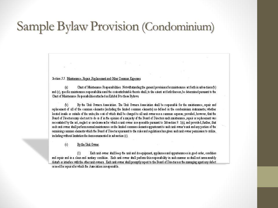 Sample Bylaw Provision (Condominium)