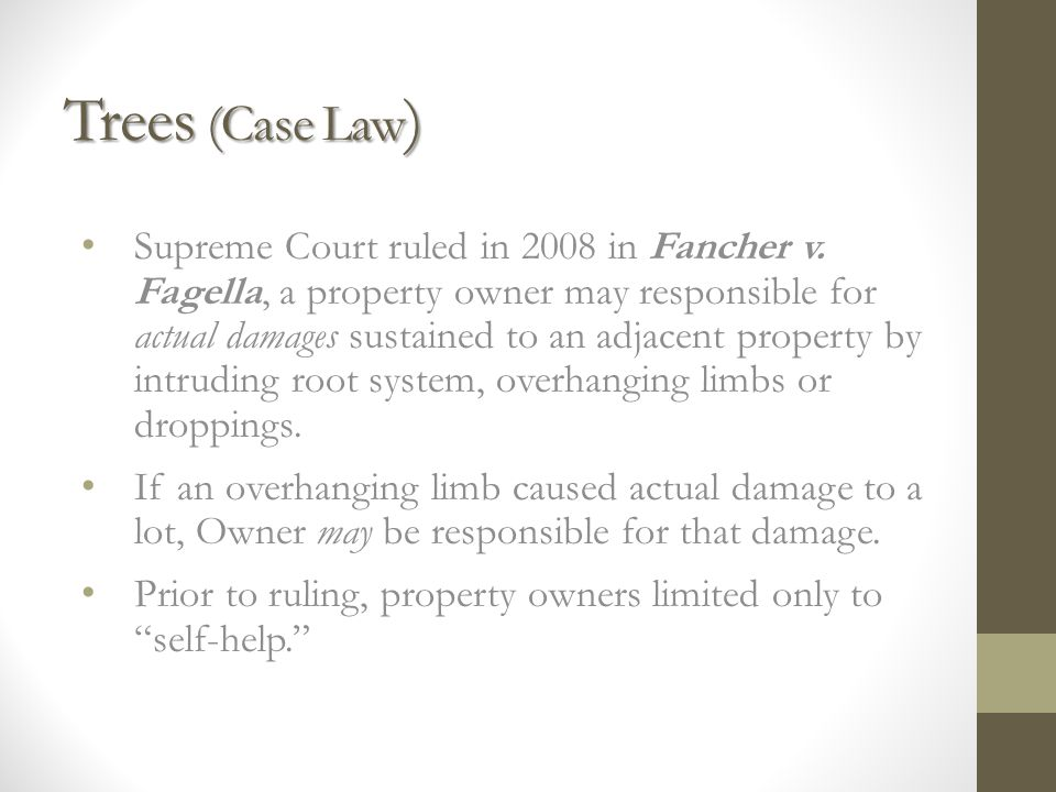 Trees (Case Law ) Supreme Court ruled in 2008 in Fancher v.