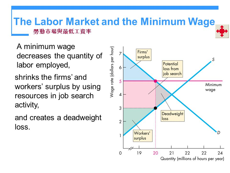 The Labor Market and the Minimum Wage A minimum wage decreases the quantity of labor employed, shrinks the firms and workers surplus by using resource