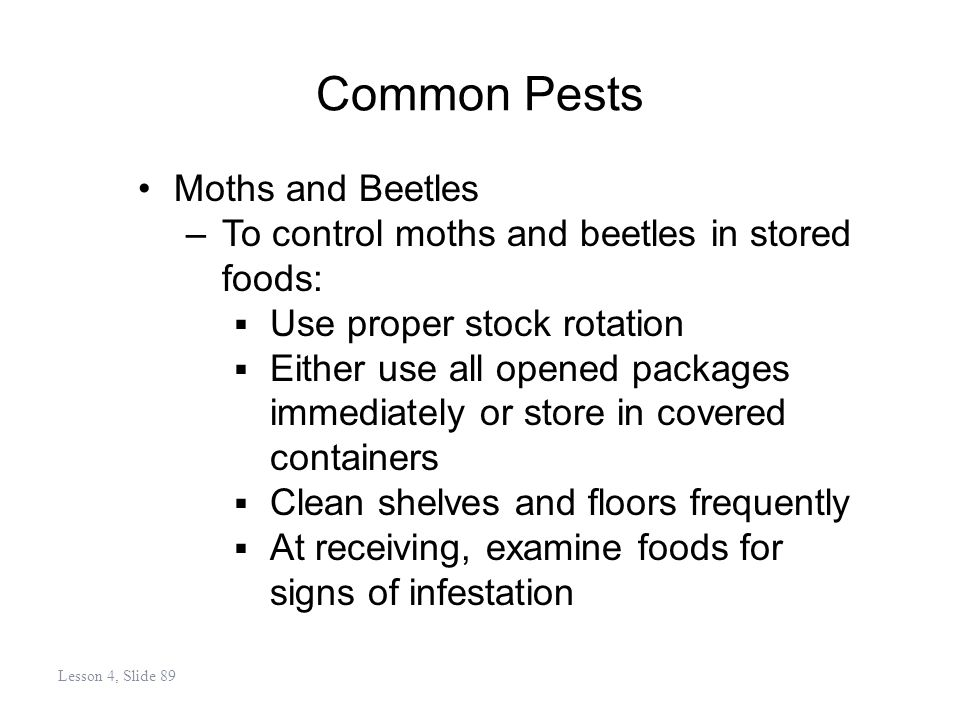 Common Pests Moths and Beetles –To control moths and beetles in stored foods: Use proper stock rotation Either use all opened packages immediately or store in covered containers Clean shelves and floors frequently At receiving, examine foods for signs of infestation Lesson 4, Slide 89