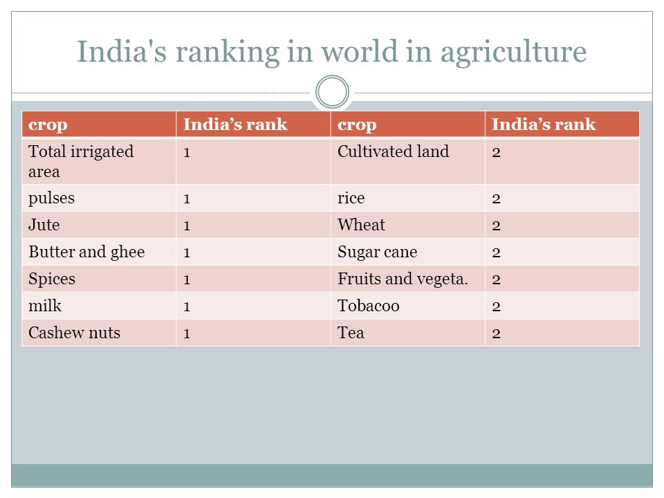 India s ranking in world in agriculture cropIndias rankcropIndias rank Total irrigated area 1Cultivated land2 pulses1rice2 Jute1Wheat2 Butter and ghee1Sugar cane2 Spices1Fruits and vegeta.2 milk1Tobacoo2 Cashew nuts1Tea2