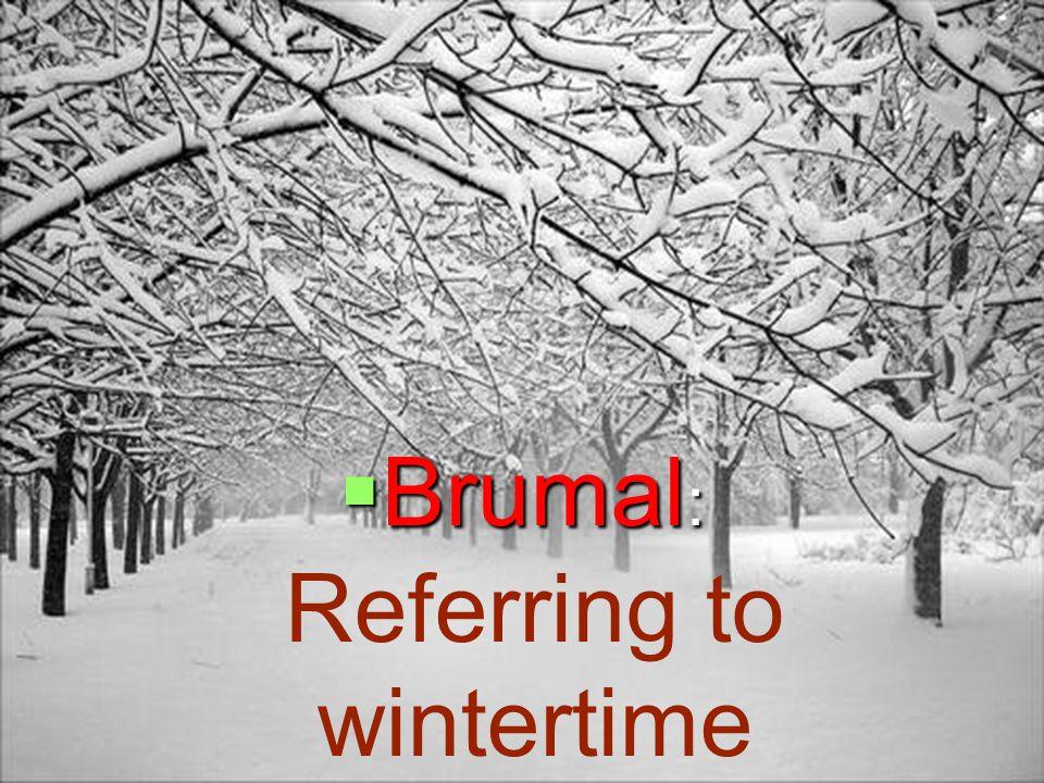 Brumal : Brumal : Referring to wintertime